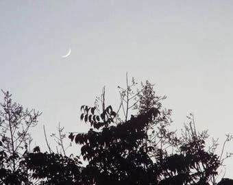 Crescent Moon Matte Photo Print