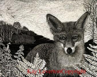 Fox in Bracken Blank Greetings Card from original Scraperboard design