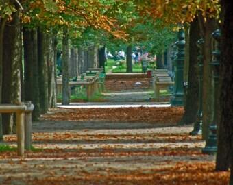 Jardin de Tuileries Pathway