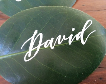 Hand written place cards - white ink on camellia leaf - modern script