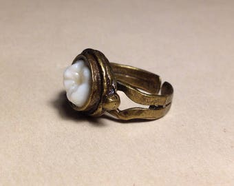 LAST ONE - Tooth Fairy Series: Uno Dientes Real Human Molar Adjustable Brass Ring