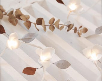 String light Mocha 10 leds - Nude Collection