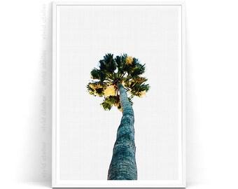 Palm Tree Print, Palm Poster, Palm Digital Print, Palm Print, Palm Art Print, Palm Watercolor, Palm Wall Print, Palm Printable Art, Download