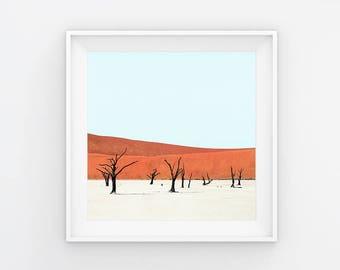 Deadvlei XIII Desert Trees Photography Print