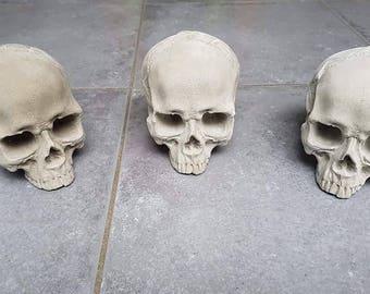 Fireplace firepit skull 3 pack