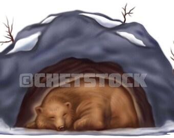 Bear Hibernates