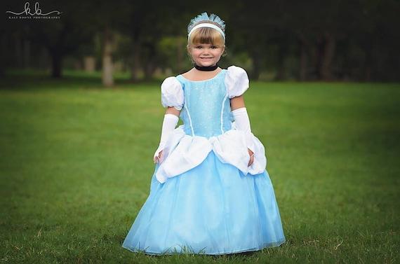 Disney Princess Ball Gown Dresses