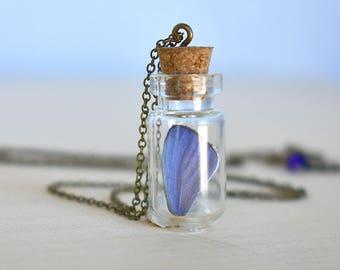 Butterfly Wing Bottle Terrarium | White & Purple Wing Necklace | Cute Butterfly Necklace | Blue Butterfly Necklace