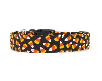 Halloween Candy Corn Dog Collar