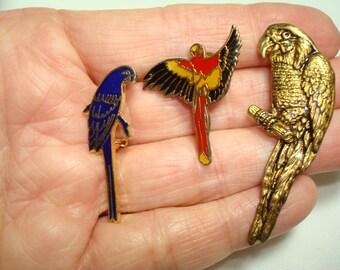 Three 1980s Vintage Metal Parrot Macaw Bird Pins.
