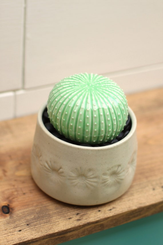 ceramic pot with cactus // porcelain cactus and pot // cactus decor // cactus plant  // cactus pot