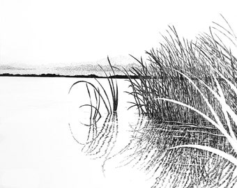 Lake Trafford Florida drawing,Everglade art,pen and ink drawing,tropical art,Everglade prints,everglades art,water art,lake pen and ink
