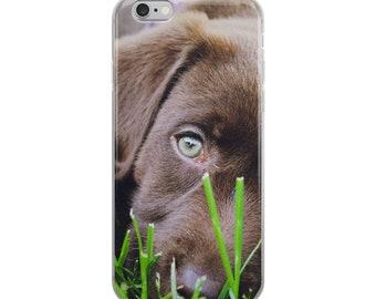 Grassy Pup iPhone Case