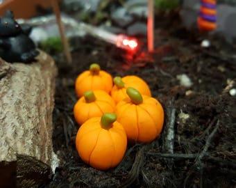Miniature Pumpkins/Gourds - Fairy gardens/Terrarium/Garden Accessories/Table Top