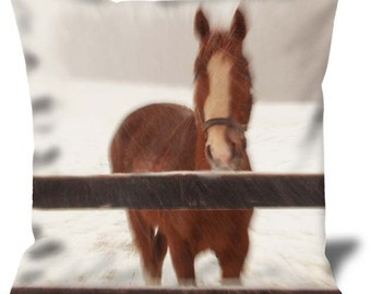 """P3166837 22""""x22"""" Velveteen Pillow Cover"""