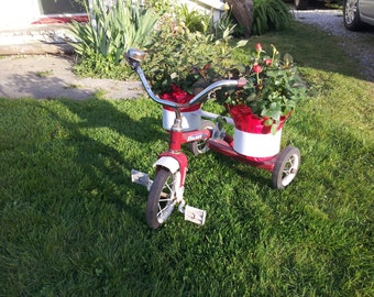 Tricycyle Planter