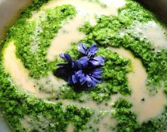 Veggies - Raw Ventures: A Journey through Raw & Living Food - Veggies