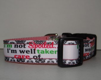 Dog Collar *  I'm Not Spoiled I'm Well Taken Care of * Adjustable Buckle Dog Collar OR Martingale Collar