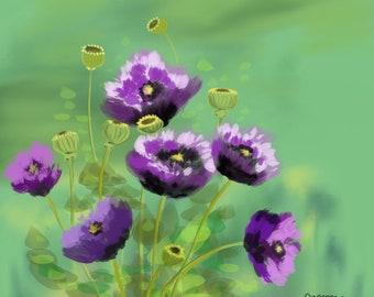 Wild Purple Poppies
