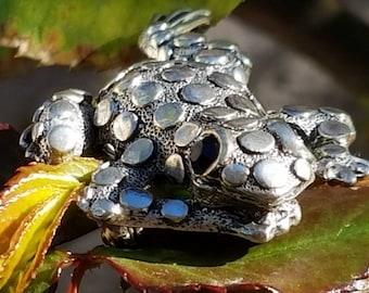 Lapel Brooch, Brooch Pins, Antique Brooch, Vintage Frog Pin, Marcasite Frog Brooch, Frog Brooch, Frog Jewelry