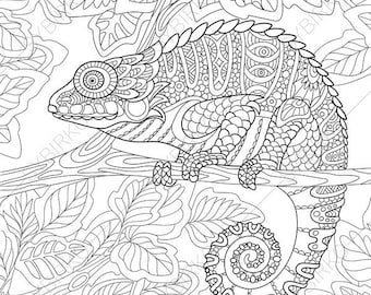 Chameleon Lizard 2 Coloring Pages Animal Book For Adults Instant Download Print