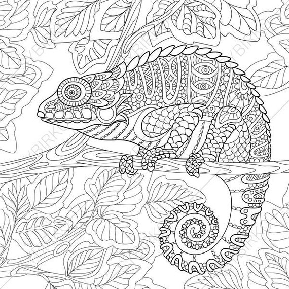 chameleon lizard 2 coloring pages animal coloring book pages