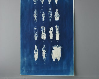 Massive Goddess Identification Cyanotype Chart