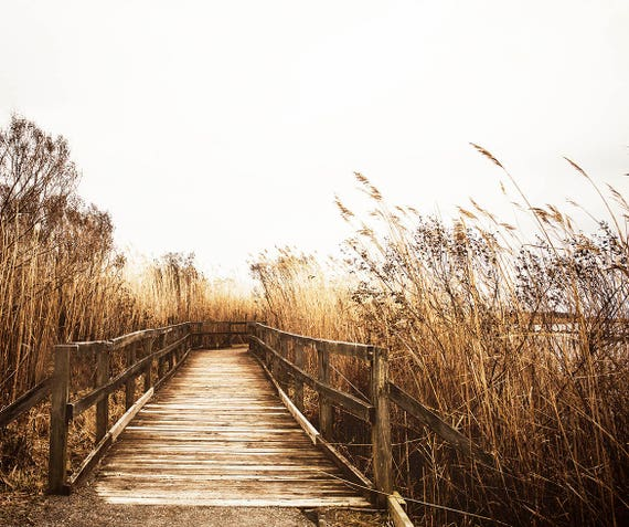 Coastal Boardwalk, Fall Wall Art, Nautical Photography Print, Neutral Home Decor Art, Beach Print, Cindy Taylor Photography, Fine Art Print