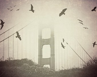 "Golden Gate Bridge - 8x10 photograph - ""Birds over the Bay"" - fine art print - vintage photography - black and white  - San Francisco"