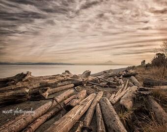 Driftwood at Fay Bainbridge Park, Mount Rainier, Puget Sound, Pacific Northwest Art, Bainbridge Island Landscape, 8x10 Wall Art, Home Decor
