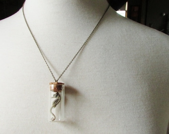 Necklace - Baby Seahorse in Miniature Jar
