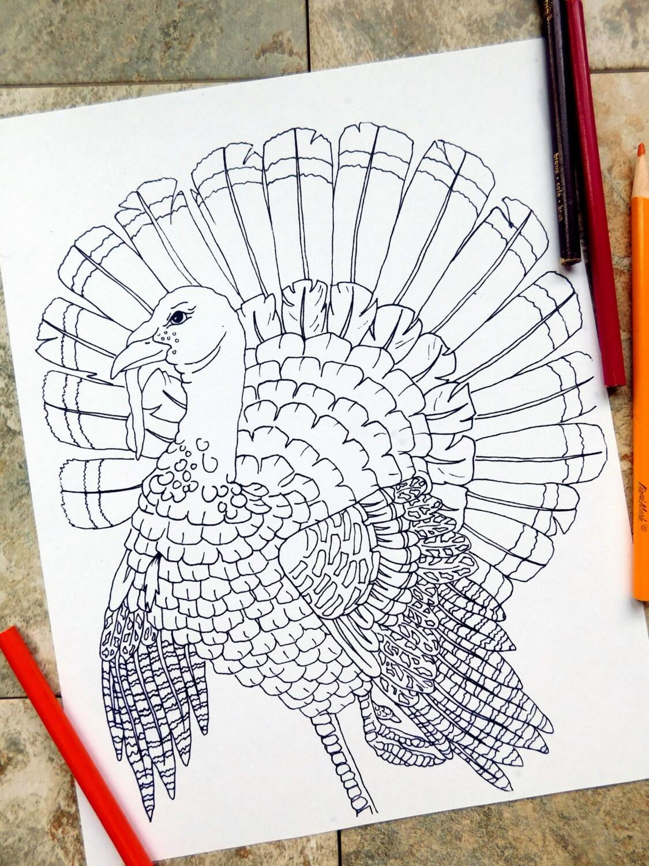 Thanksgiving Färbung Seiten Türkei Bauernhof Herbst