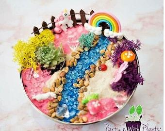 Unicorn Fairy Garden, Succlents, Fairy Garden Kit, Succulent, Unicorn Craft, Unicorn Birthday Party, Unicorn gift, Unicorn Garden kit, Pony