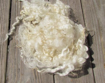 Gotland X Leicester Locks Natural Ivory Wool Curls Washed 2 oz
