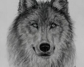 Custom Power Animal Portraits