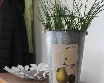 SALE! Decorative Sap Bucket - Vintage Pear Diagram