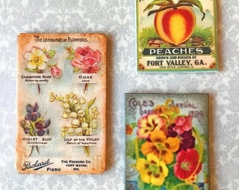 30% OFF Sale Miniature Dollhouse Flower Shop vintage seed packet Wall Art 1:12 Picture Flower