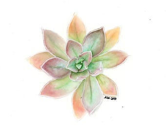 Succulent Original 6x6 inch Watercolor Painting