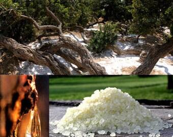 Chios Mastic - essential oil (BIO)