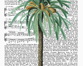 Dictionary Art Print Wall Decor Digital Print Tropical Print Vintage Poster Vintage Palm Print