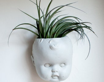 Doll Head Wall Planter, Concrete Baby Head, Air Plant, Succulent