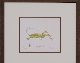 Grasshopper,Insect Bug pictures, Butterfly art, Green bugs, Green insect art, Framed green insect, Green brown art,Dragonfly art,framed art