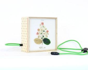 Lightbox Be Square / flowers