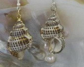 Spiral Conch Shell Dangle Earrings