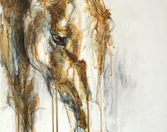 Mixed Media Painting of a Horse, Horse Head, Animal Portrait, Modern Original Fine Art, Equine Art, Contemporary Art