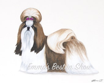 Shih Tzu Dog - Archival Fine Art Print - AKC Best in Show Champion - Breed Standard - Toy Group - Original Art Print