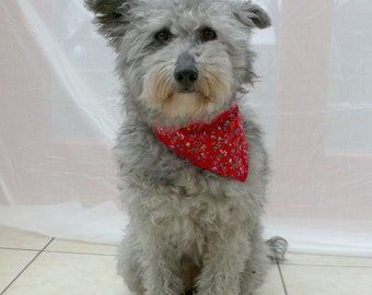 Red dog bandana - Floral pet bandana - Red dog scarf - Pet clothing - Dog gift - Tie on bandana - Cotton bandana - Red flowerfield dog scarf