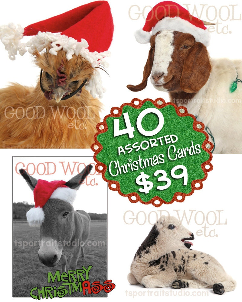 40 assorted christmas cards farm photography with