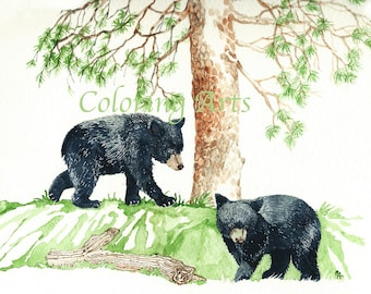 Baby Black Bears In The Woods, an instant digital download from an original watercolor painting by the artist