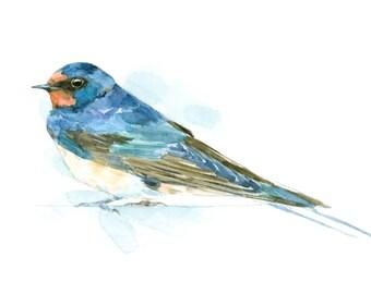 Barn swallow watercolor painting - bird watercolor painting - 5x7 inch print - 0088